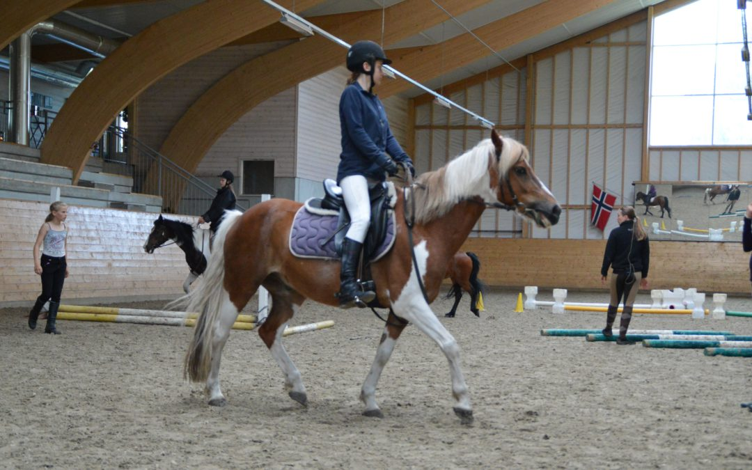Rideskoleundervisningen ved EKT