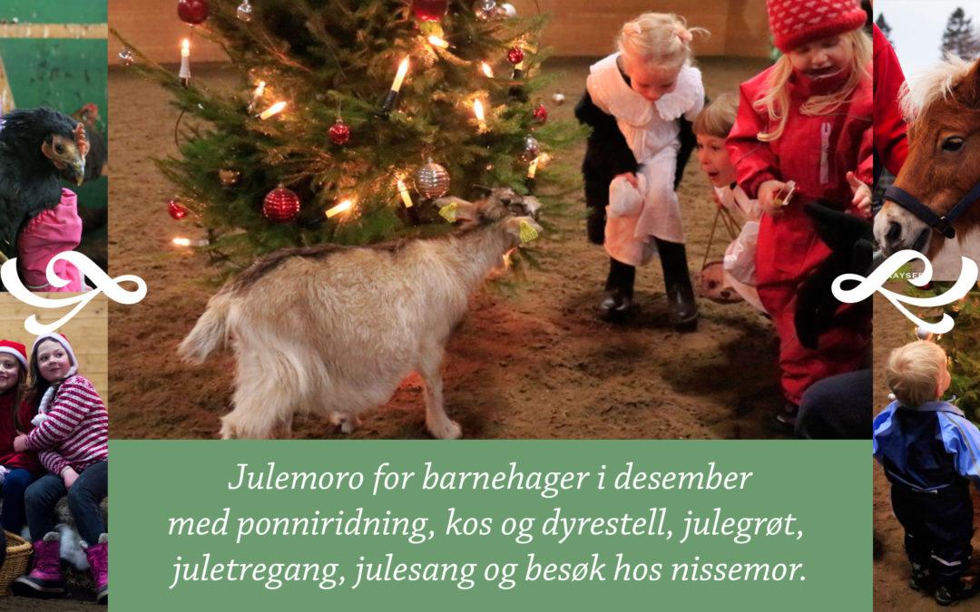 Julemoro for barnehager
