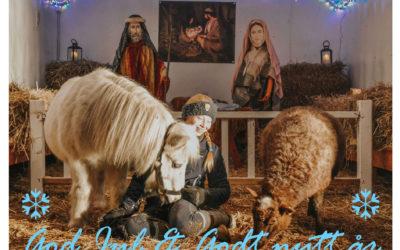 Ta julekortbilde på EKT – unikt tilbud!