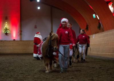 Nissebarna leier snille ponnier for barneridning