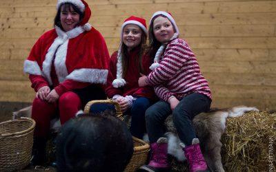 Christmas fun for kindergartens in December. Registration is open!