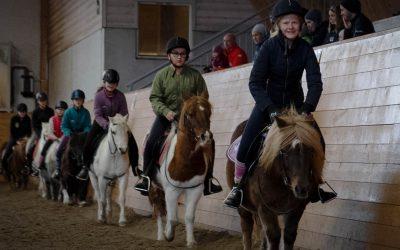 Equestrian Christmas 2019
