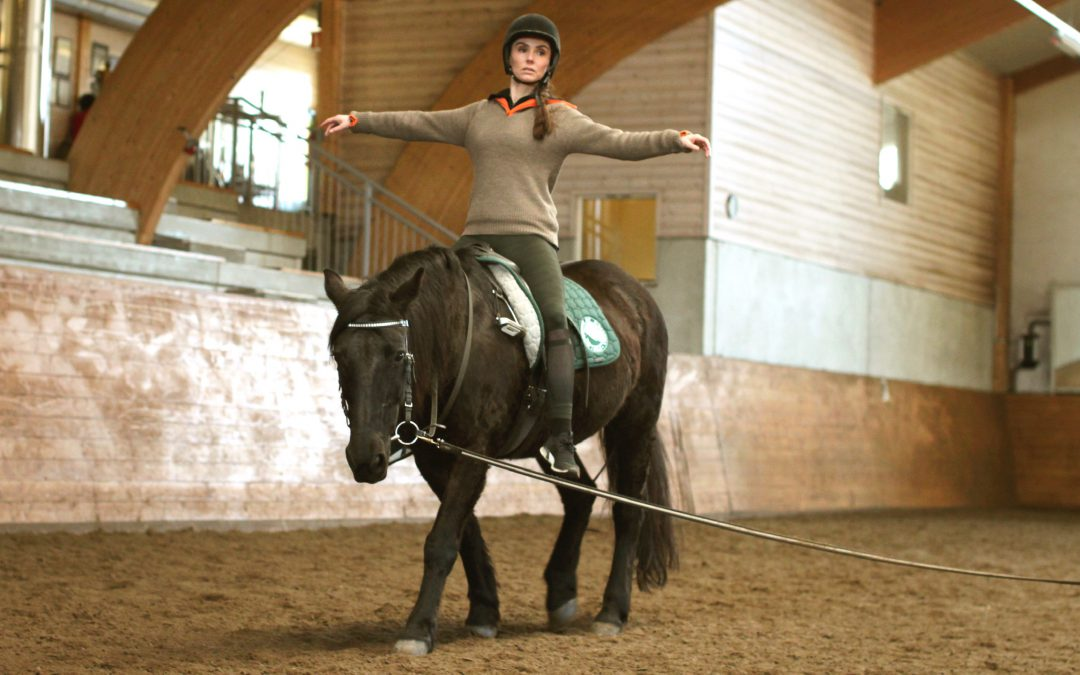 Extended training program with physiotherapy and back school for horses - EXPOSED PGA CORONAVIRUSET