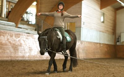 Expanded training program with physical therapy and horse back school
